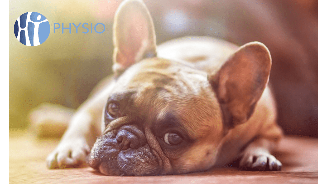 rest for back pain, ht physio, physio farnham, physiotherapy farnham